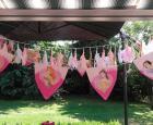Prinsessenkist-vlaggetjes